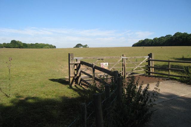 Field off School Lane