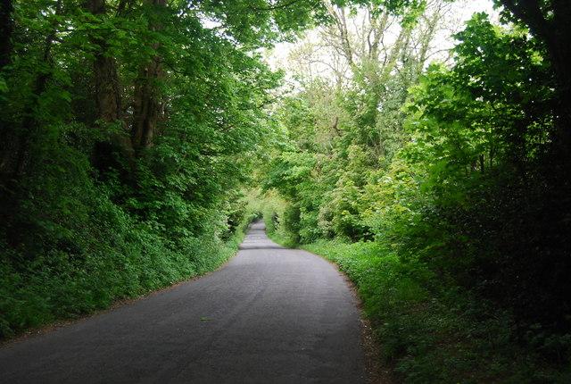 Descending Newick Hill