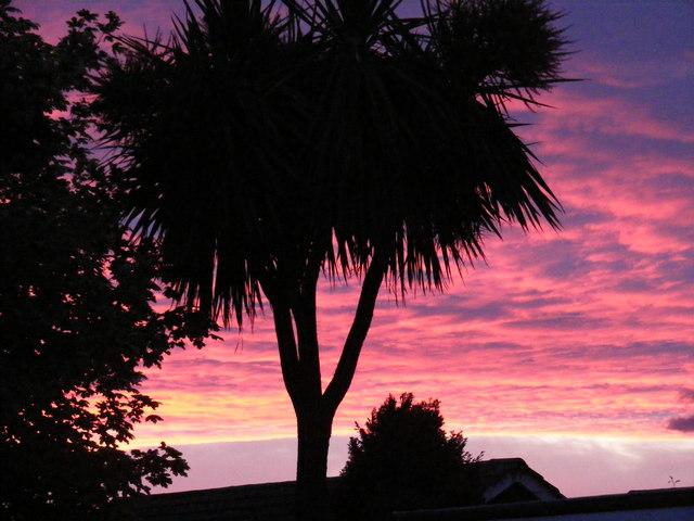 Sun set at Ardsley