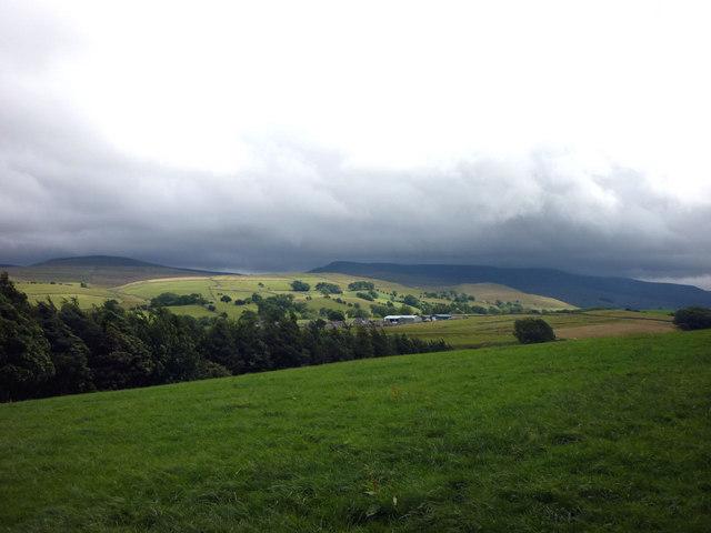 Pastures near Nateby