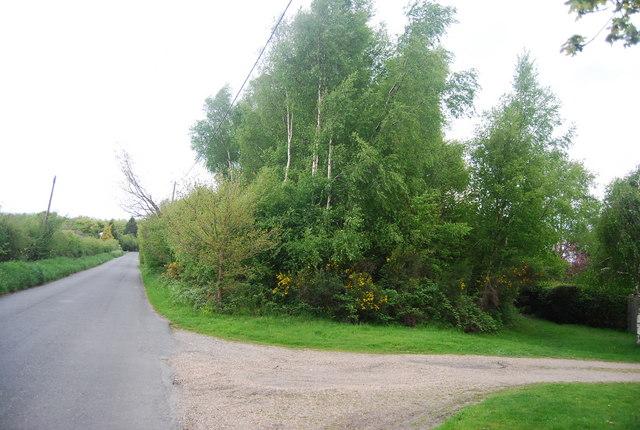 Newick Hill north of Newick
