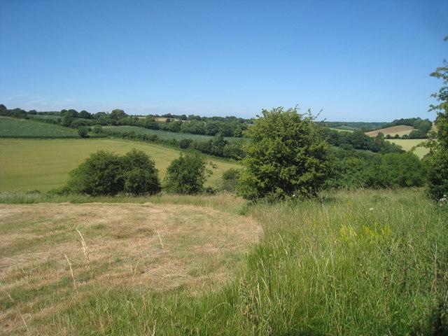 Fields near Court Lodge