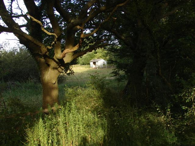 Britten's Pond
