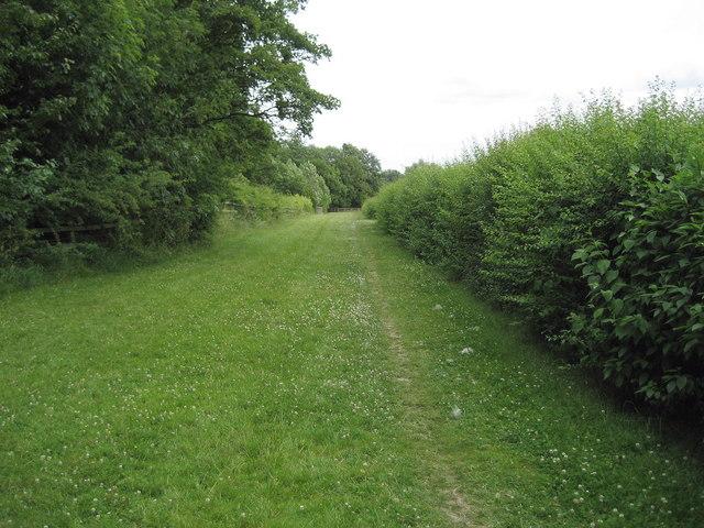 Teesdale Way near Rockcliffe Park
