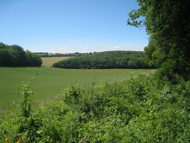 Field near Edards Wood