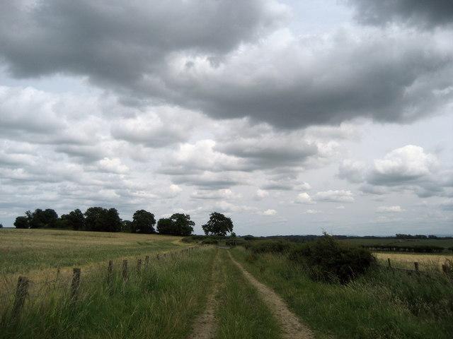 Teesdale Way approaching Blind Lane