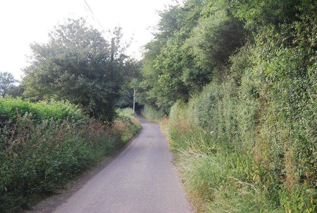 Lane north of Bushes Farm