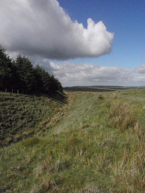 Ancient Ditch