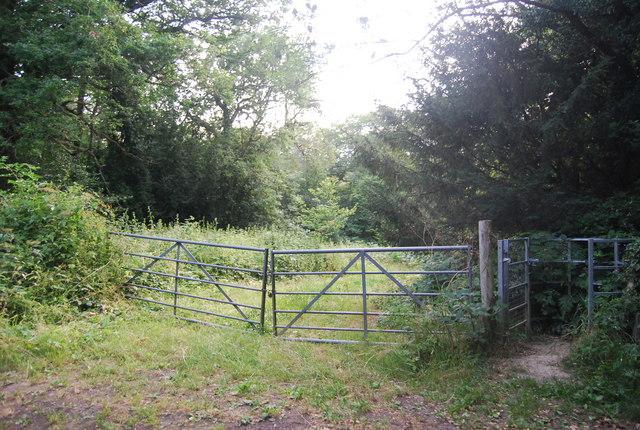 Footpath west through Bushes Wood