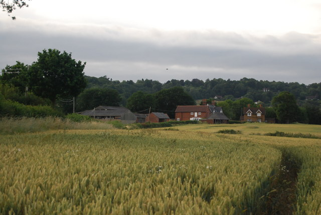 View across wheat fields to Bowzell Farm