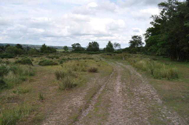 Exmoor : Brendon Hills - Haddon HIll Footpath