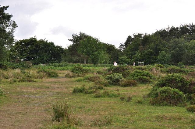 Exmoor : Brendon Hills - Haddon Hill Moorland