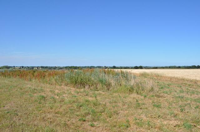 South Norfolk Fields