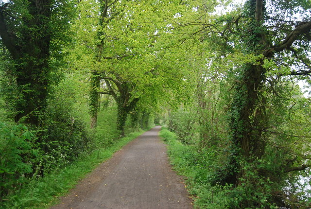 Sussex Border Path heading north