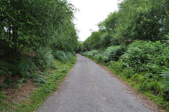 Exmoor : Brendon Hills - Haddon Hill Road