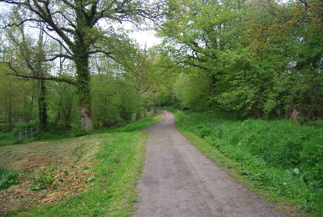 Sussex Border Path heading north along by fish ponds