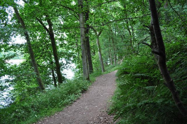 Exmoor : Wimbleball Lake Path