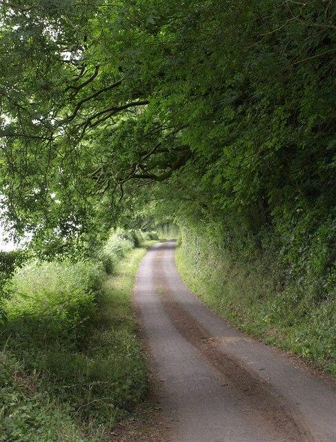 Holland's Lane