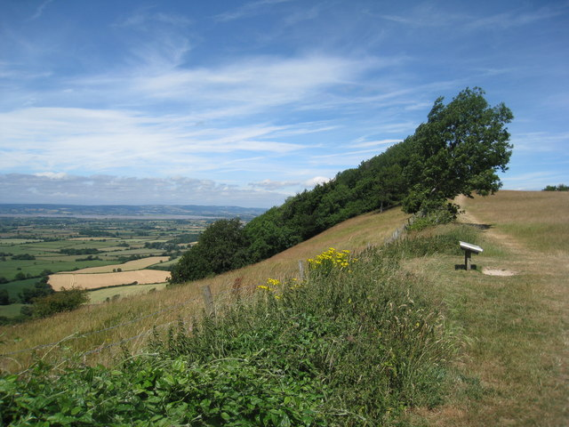 On Frocester Hill