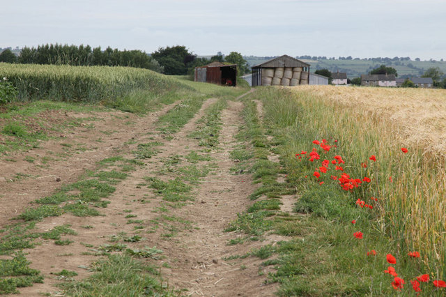 View along bridleway towards Finghall