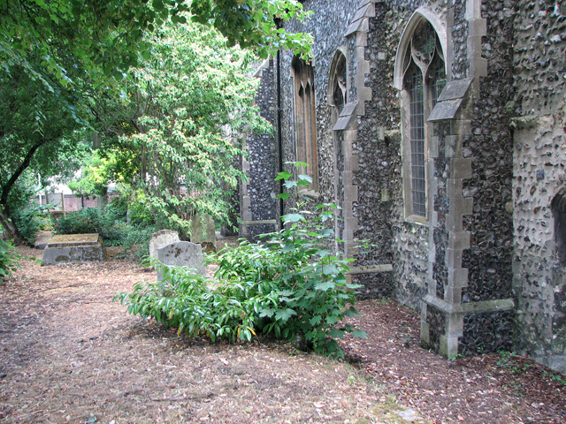 St Etheldreda's church in King Street, Norwich - churchyard