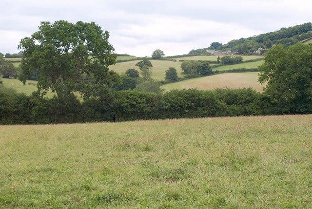 Tone valley