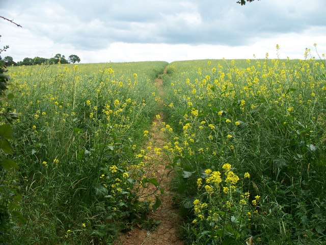Footpath to Chipping Norton [5]