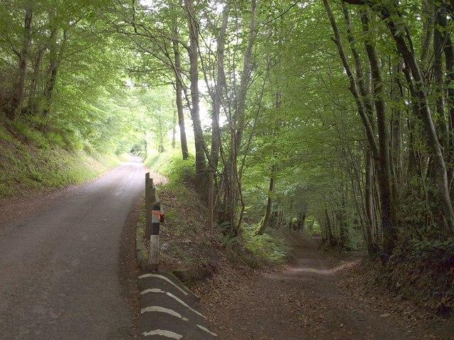 Common Lane, Huish Cleeve
