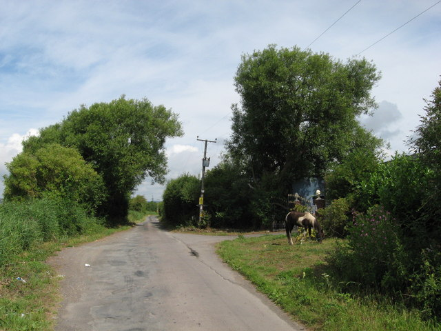 Heol-Las, near Peterstone