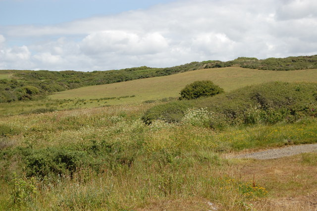 Looking inland from the bridleway at Predannack