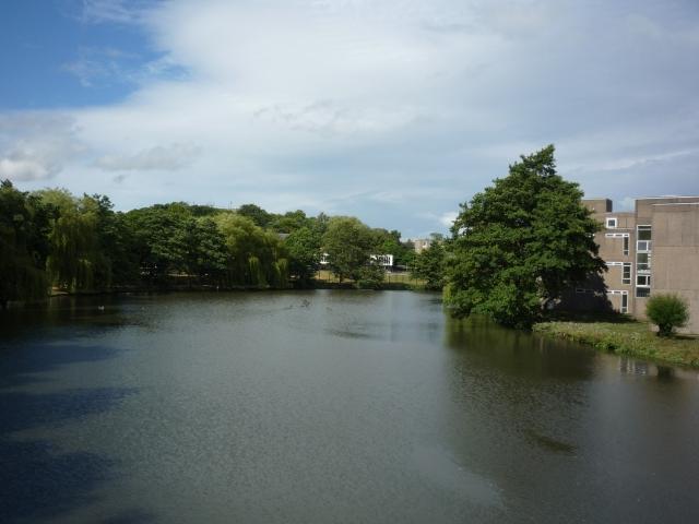 From the Goodricke-Wentworth bridge