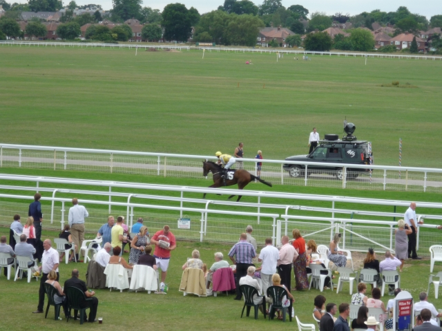 Horse and camera car
