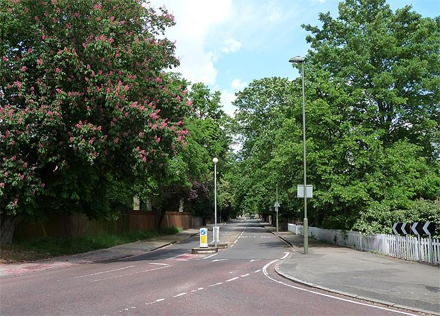 Chislehurst Road, Bickley