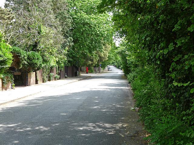 Pines Road, Bickley