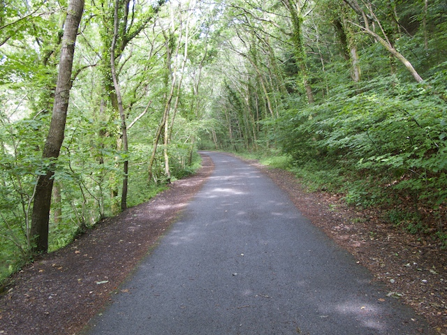 Plym Valley Trail