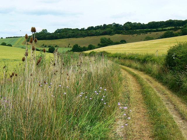 Track to access land, near Preston