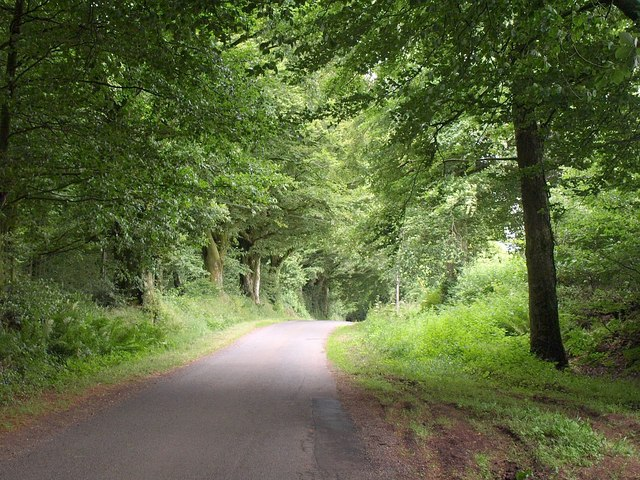 Road near East Barn