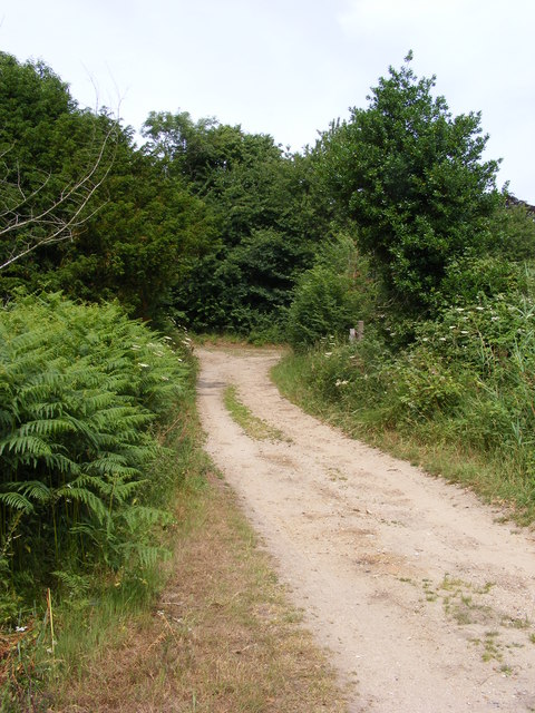 Angles Way approaching footpath junction