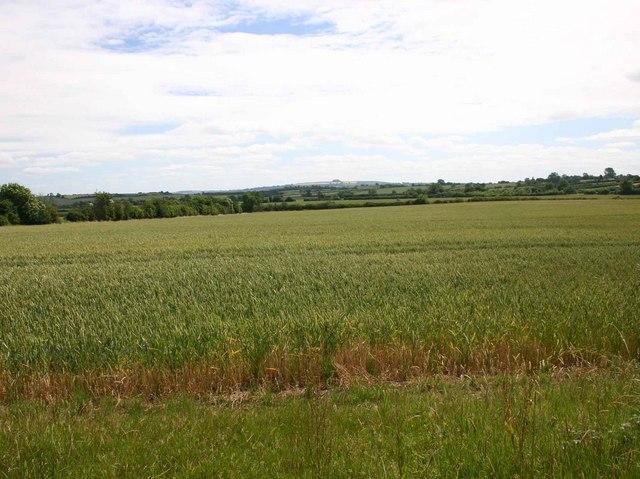 View east from lane near Far Longdon