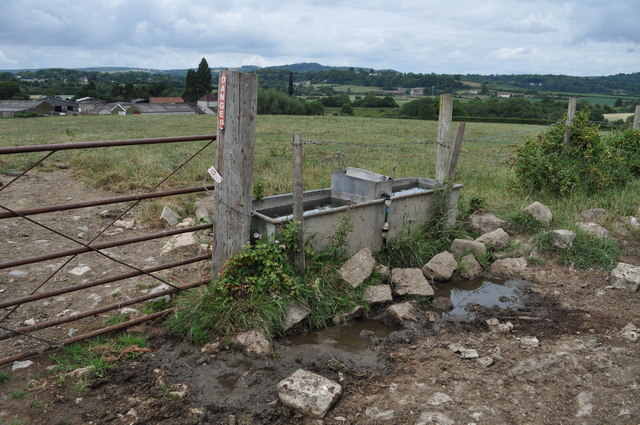 Leaking water trough on track from Tump Farm to Pighole Pill