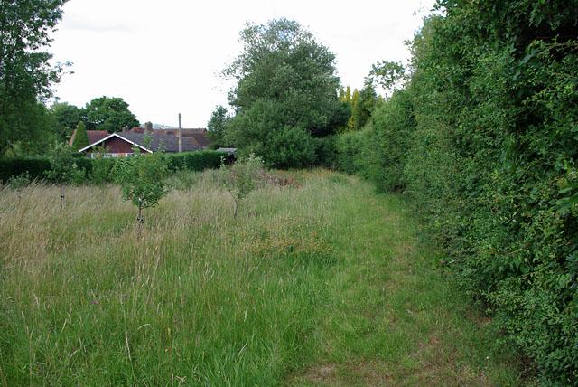 Footpath to Gadbrook Road