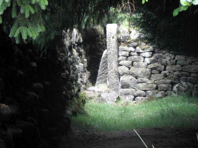 Stile in woodland