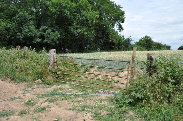 Gate to Ladysmith field