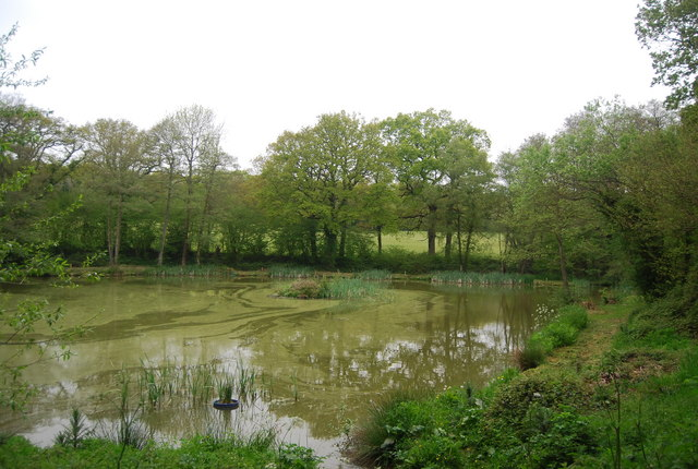 Third fishing lake north of Horsted Keynes