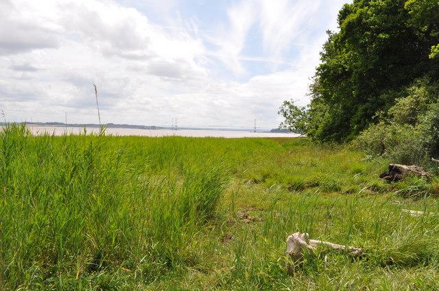 Estuary at Pighole Pill