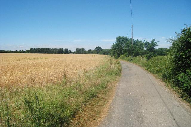 Peafield Wood Road