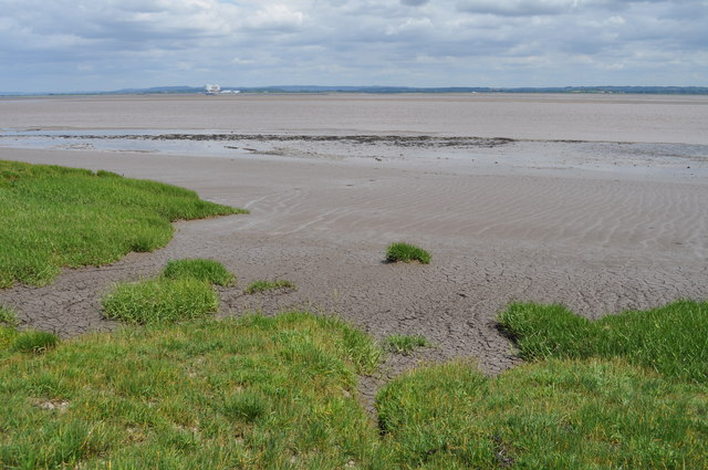 River Severn estuary at Sedbury Cliffs