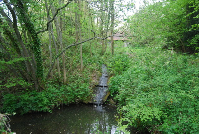 Stream by the Sussex Border Path