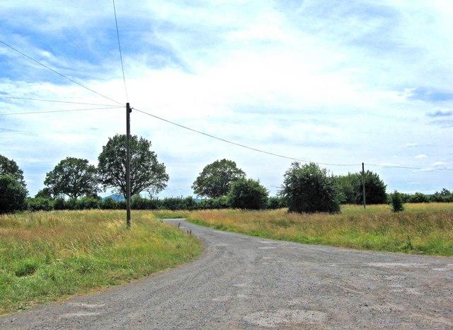 Track by the Fox Inn, Monkton Green