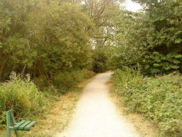 Footpath in Attenborough Nature Reserve